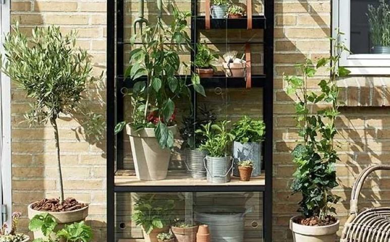 Üvegház a balkonon- hogy a hidegben is legyen egy kisnyár
