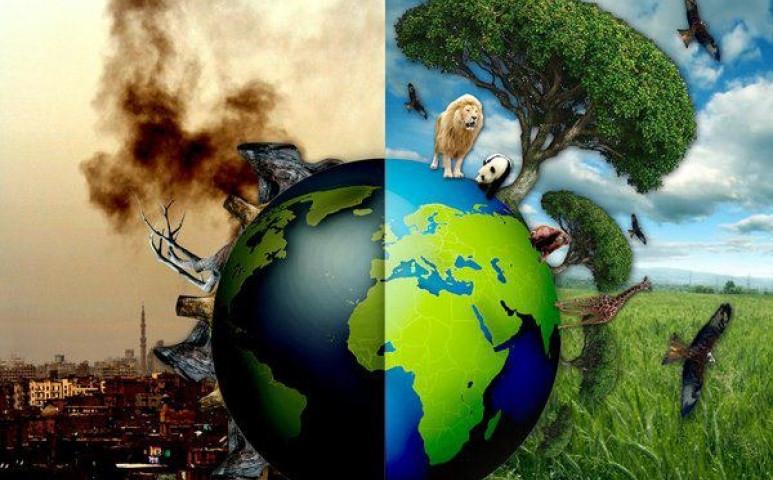A természetkárosítás az emberiség elleni bűncselekmény - most már jogilag is