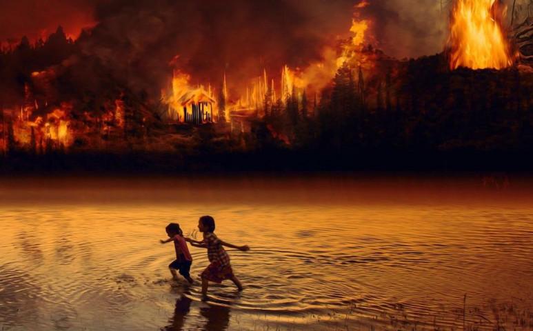 Co2 kibocsátóvá válik az Amazonas esőerdeje
