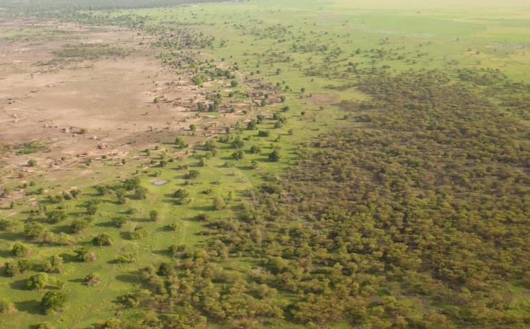 A Nagy Zöld Fal dzsungelterve elbukott, helyette egy reálisabb célt határoztak meg, ami fantasztikus eredményekkel kecsegtet