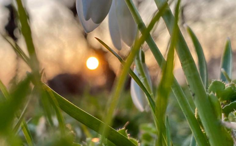 18 fok a kora tavaszi napsütésben