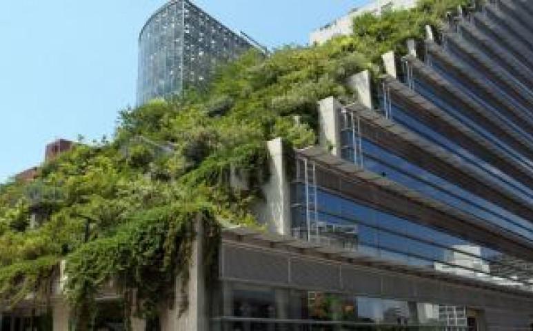Tényleg zöldek a zöldnek nevezett épületek?