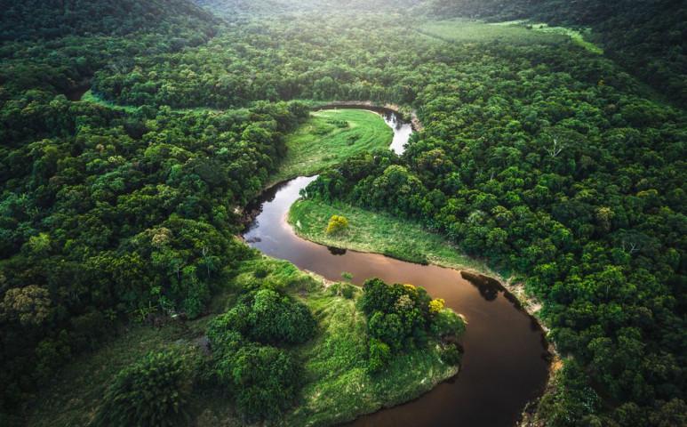 Jobbról belengetett támogatás és balról érkező irdatlan pofon az Amazonas esőerdejeinek