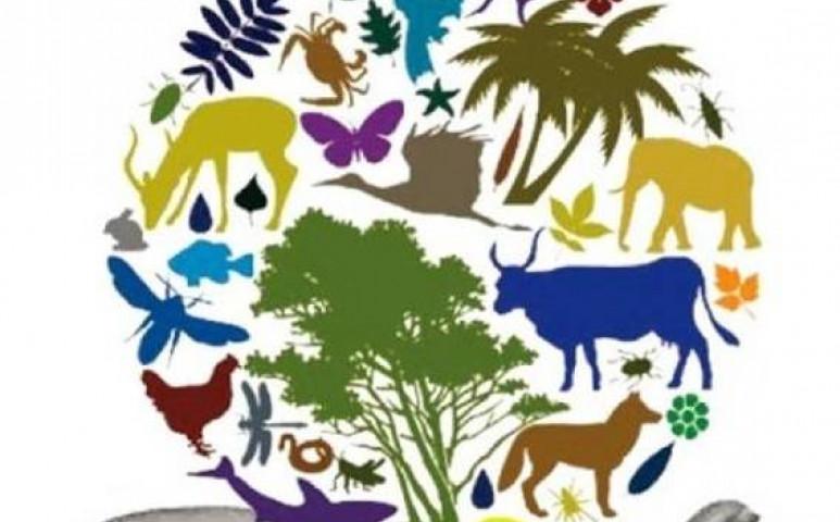 A klímasemlegesség mellé elengedhetetlen a természetpozitivitás 2030-ra