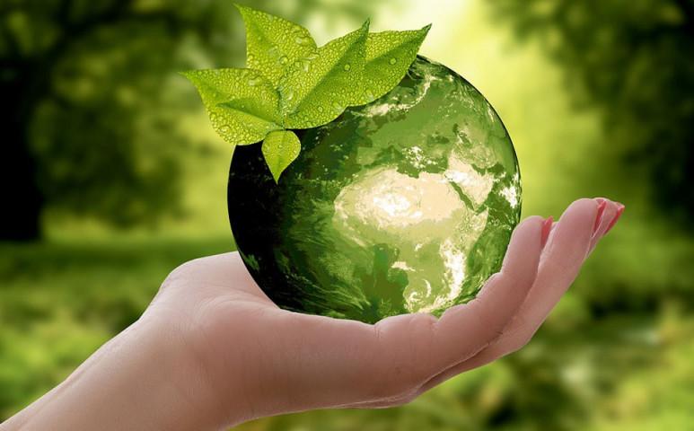 Legyen környezetvédelmi terület a bolygó harmada