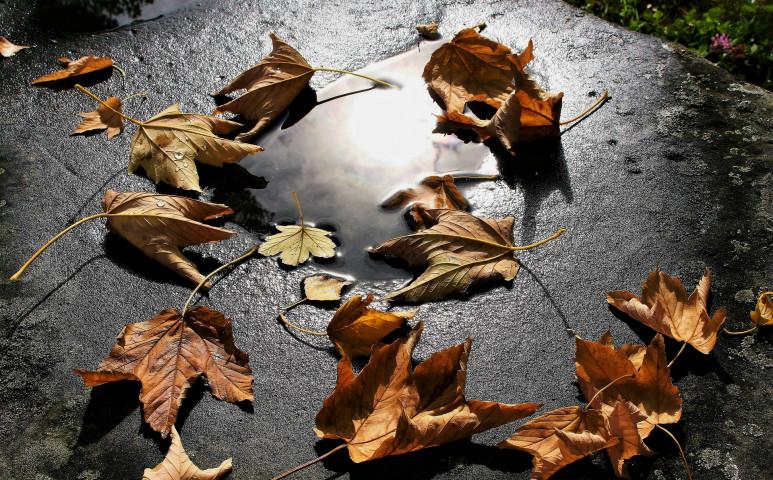 Jön az ősz és a csapadék