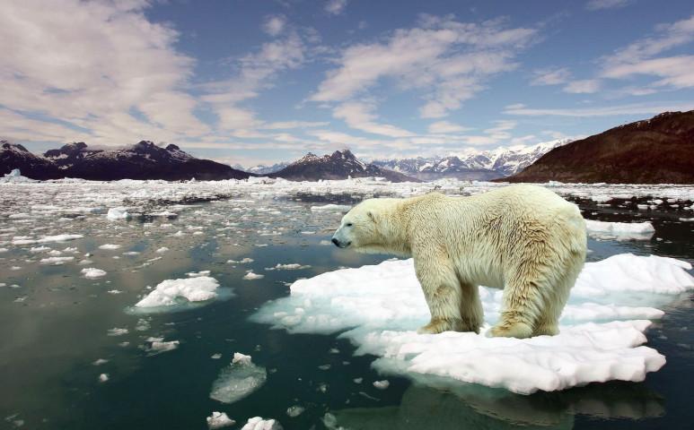 Létezik egérút a klímaváltozás elől?
