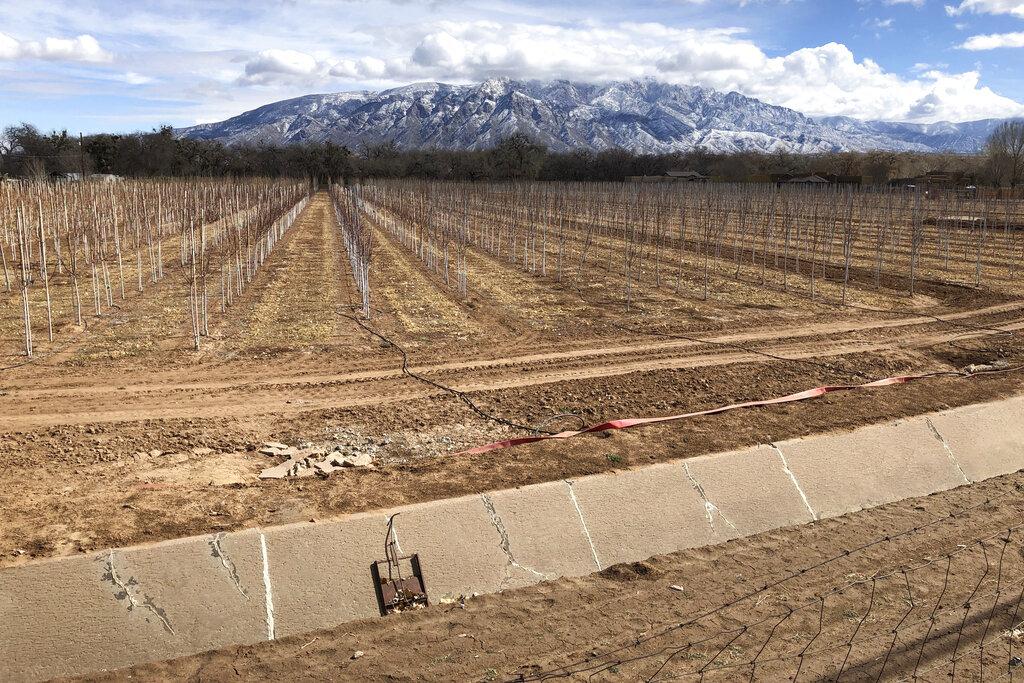 Kegyelemdöfés a kaliforniai mezőgazdaságnak