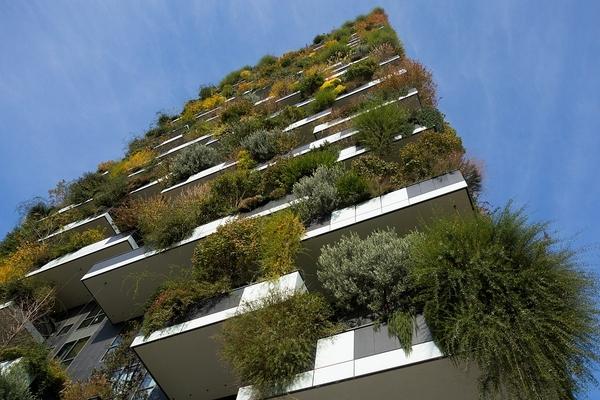Eindhoven is vertikális erdőt kap - ráadásul a szociálisan rászorulók költözhetnek be